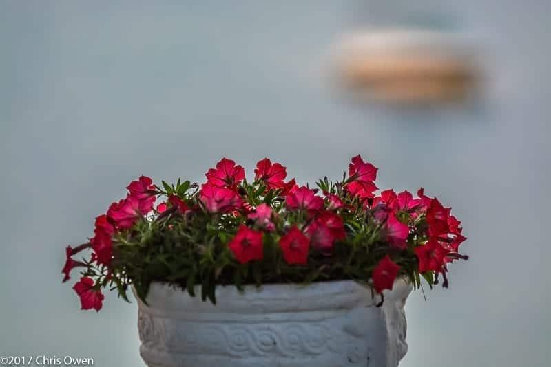 Danai Resort Greece – 083